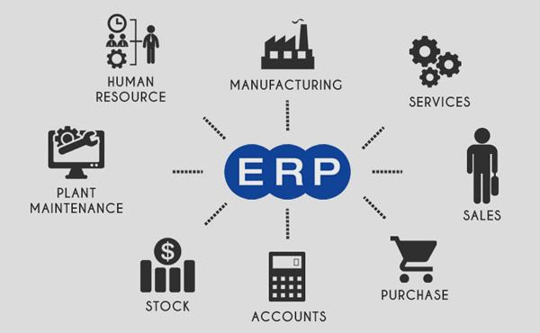 ERP SOFTWARE COMPANY